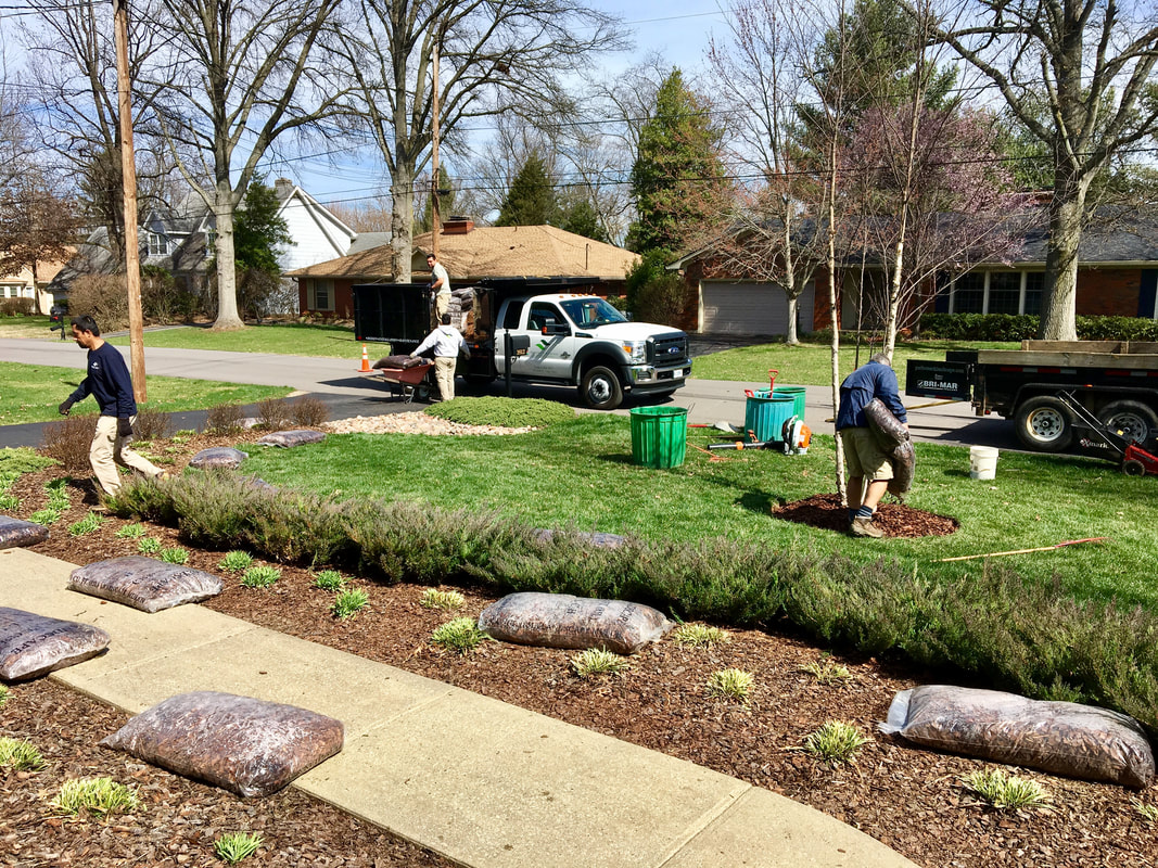 Contact Us   Landscaping | Lawn Care | Landscape Maintenance | Leaf Removal